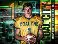 Coal City Varsity Football 2017
